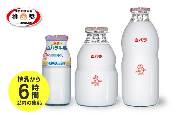 特選白バラ牛乳